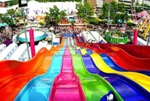 The Funnest Stuff on Holidays / Water slides, bungee jumping, whatever we can find! / by Purple Travel