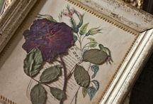 diy dried flowers ideas