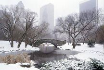 Locations: Central Park NYC / Research used for my novels.