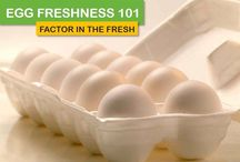 "Egg Freshness 101 / We're declaring February ""Freshness Month"" and are excited to share our new Egg Freshness 101 series! / by Incredible Egg"