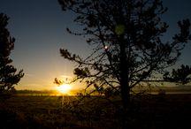 Sunriver Photography / Beautiful photos shot at Sunriver Resort to bring you closer