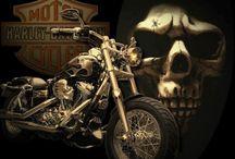 Harley Board / by ☠ кαяєи ¢σияα∂ ☠