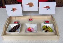 Homeschool Unit: Birds