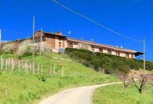 Cascina Ca'Rossa / Nello straordinario paesaggio collinare del Roero spunta un' importante realtà enologica piemontese. Cascina Ca' Rossa è una autentica certezza per Arneis e Nebbiolo.