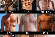 Body fat percentage of the men