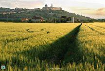Landscape Marche