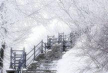 Seasons / Winter