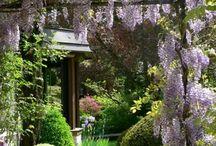 Pergolas jardin
