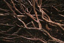 91: Texture