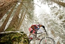 Mountainbiking Downhill Freeride