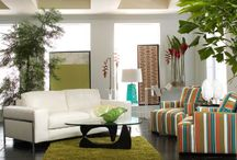 contempo - staging / by Van Nuck Design