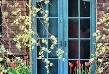 Windows and Doors / by Brenda Arnett