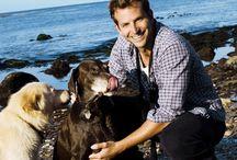Famous Celebrity Bradley Cooper HD Wallpaper   Famous HD Wallpaper