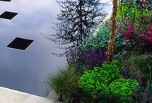 Garden and Landscape Projects