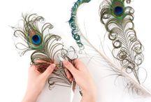 DIY Peacock Feather Ideas