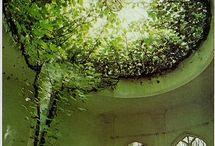 Zöld / Green / Minden ami zöld