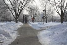 jeremy's university