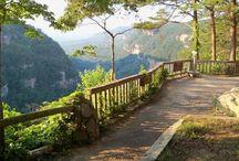 Chattanooga Nature: Hikes