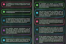 Infografías de Familia y Salud