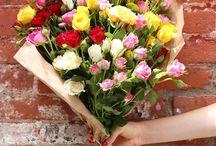 Beautiful Flowers / Beautiful Flowers, Flowers