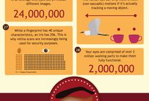 Eye Facts Infographic