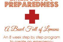 Organizing: {Emergency Preparedness}