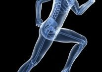 Orthopedics & Sports Medicine / Information on orthopedic surgery procedures and useful advice for keeping your joints healthy and your body active.