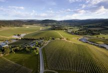 Yarra Valley & Dandenong Ranges / by Visit Melbourne