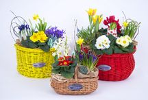 Flower Basket / Bike basket and flower basket, two in one. This is what we call a Fabulous Baskets gift idea.