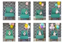 Weekly/Monthly Baby's Photo Inspiration