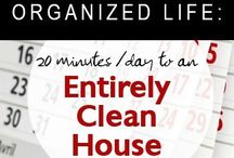 clean house in 20 mins a day