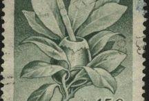 Argentinian Stamps / Sellos / Estampillas