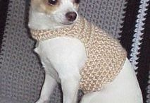 chihuahua clothes, beds and toys