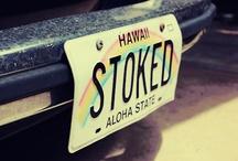 Hawaii among friends