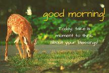 Good morninga