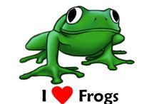I love frogs too