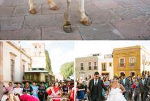 Wedding / by Gabriela Farias