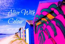 Alive With Colour / A collection of amazing photographs that burst to life with colour