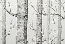 Carta da parati albero di betulla