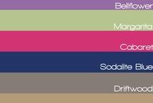 Color 2013