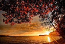 gyönyörű ősz
