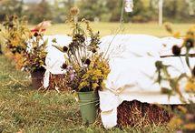 The Wedding / by Kathryn Benda