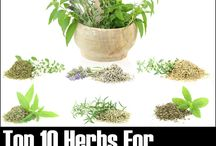 Herb Remedy