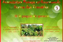 Association des jardins potagers