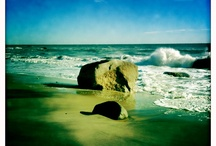 The Sea / & The Ocean