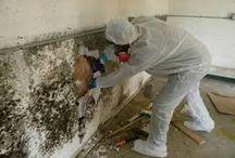 Attic Cleanup Insulation Removal Montebello CA / Finding an attic cleaning and insulation replacement professional in Montebello CA