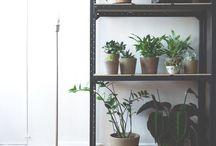 Decor / Inspirações de decor para meu lar
