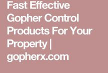 Fast Effective Gopher Control