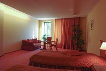 Hotel / Czterogwiazdkowy Hotel Amadeus w Wodzisławiu Śląskim to gwarancja luksusu, wysokiej jakości obsługi i Państwa zadowolenia. Nasz hotel łączy wysoki standard, szeroki wachlarz usług oraz nowoczesny design i funkcjonalność.