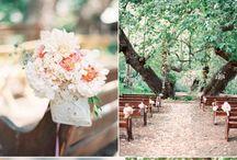 wedding / by Faith Powell